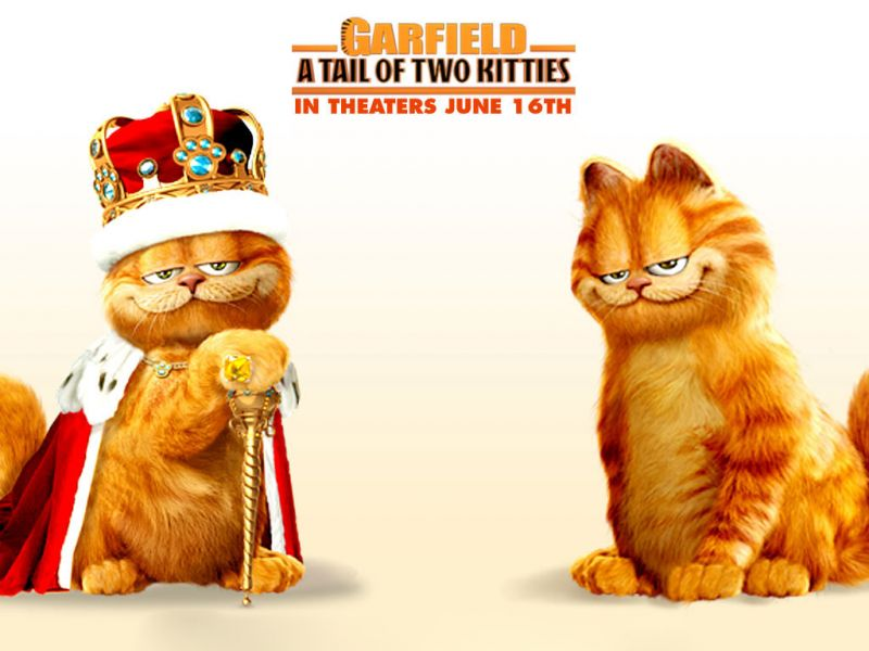 A Tail Of Two Kitties Poster Wallpaper 800x600