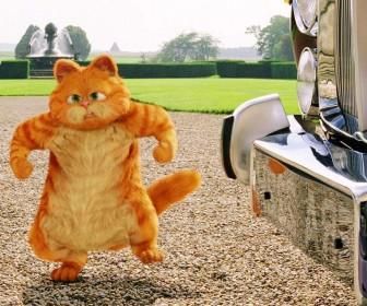 Garfield Angry Wallpaper