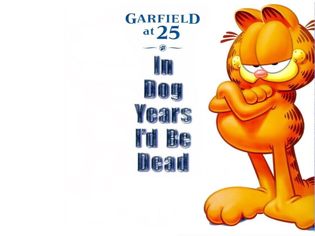 Garfield At 25 Portrait Wallpaper 1024x768
