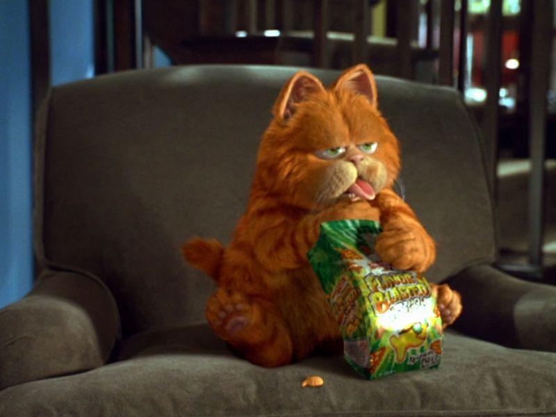 Garfield Eating Snack Wallpaper 800x600