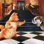 Garfield Karate Pose Wallpaper