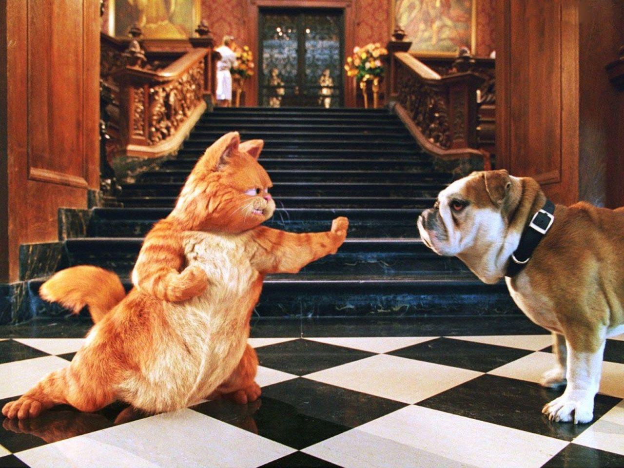 Garfield Karate Pose Wallpaper 1280x960