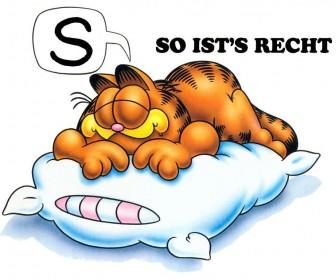 Garfield Large Pillow With German Slogan Wallpaper