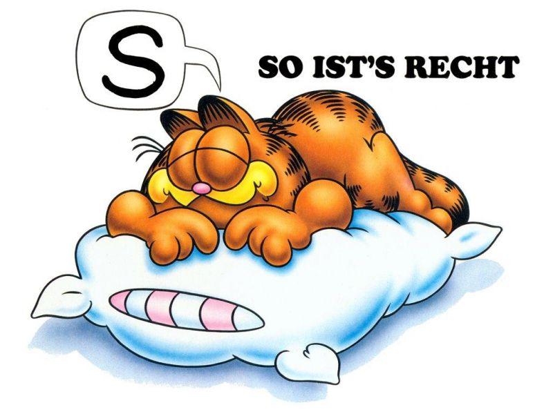 Garfield Large Pillow With German Slogan Wallpaper 800x600