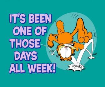 Garfield One Of Those Days Slogan Wallpaper