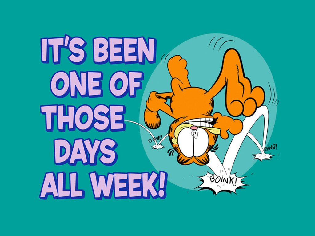 Garfield One Of Those Days Slogan Wallpaper 1024x768