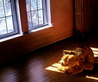 Garfield Snoozing Sun Lit Room Wallpaper