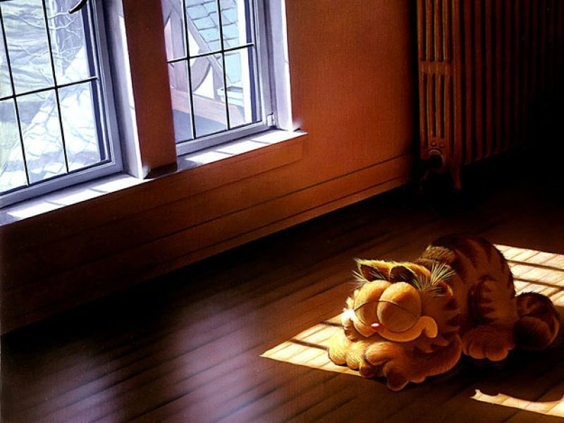 Garfield Snoozing Sun Lit Room Wallpaper 800x600