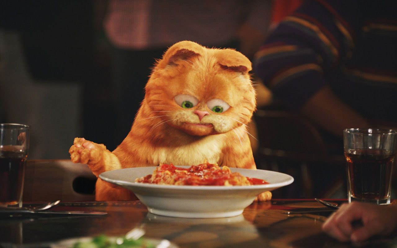 Garfield With Lasagna Plate Wallpaper 1280x800