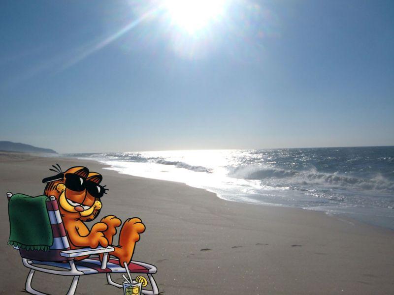 Garfiled On The Beach Wallpaper 800x600