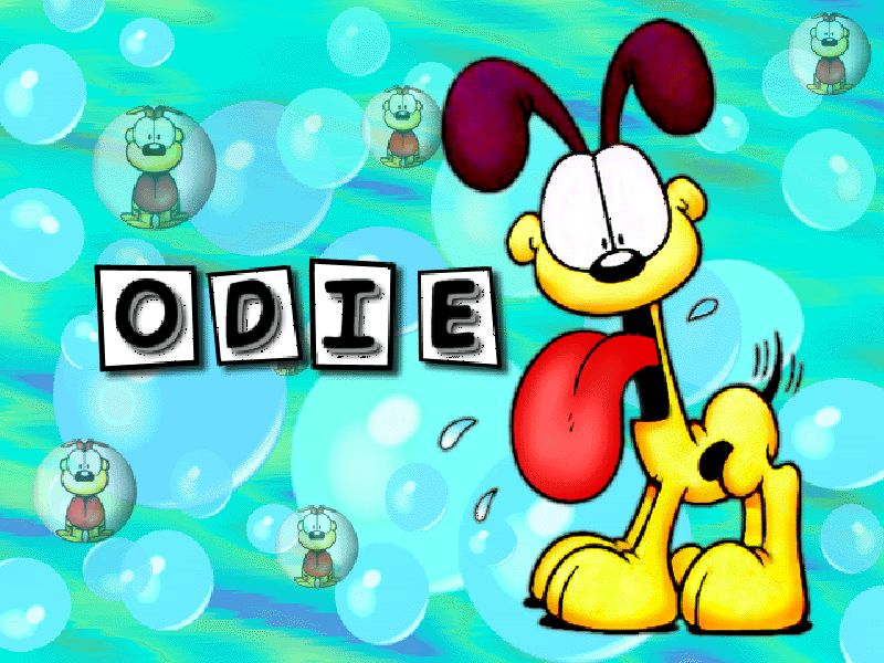 Odie Portrait With Bubbles Wallpaper 800x600